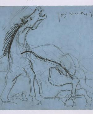 Study for the Horse [II]. Sketch for Guernica